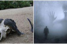 5 Fakta ratusan hewan ternak mati karena makhluk buas