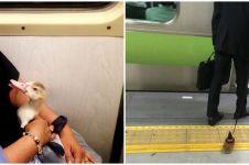 15 Potret lucu penumpang bawa hewan di kereta, ada marmut