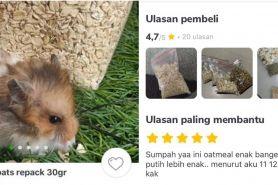 9 Cuitan pengalaman orang santap makanan hamster ini absurd