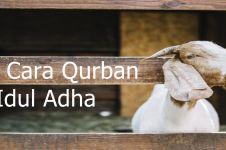 Tata cara qurban pada hari raya Idul Adha, lengkap, mudah dipahami