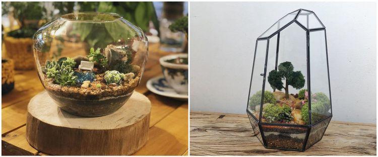 10 Potret terrarium ini desainnya keren banget, cocok untuk hiasan