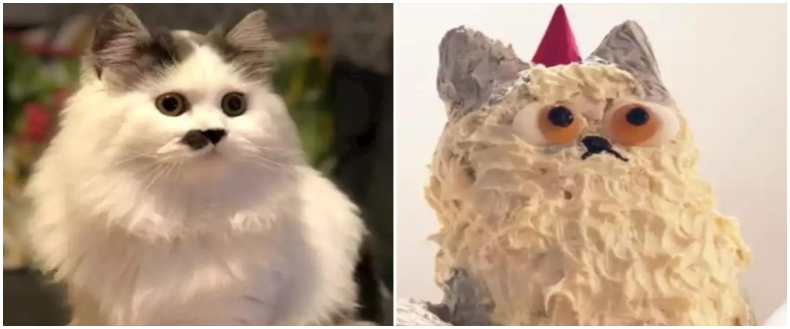 Niatnya bikin bentuk hewan, 9 kue ulang tahun ini hasilnya absurd