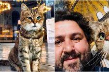 7 Potret bukti kucing Gli jadi idola pengunjung Hagia Sophia
