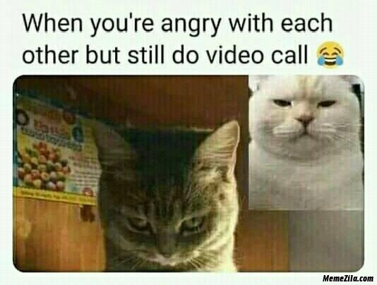 Meme saat video call Berbagai sumber