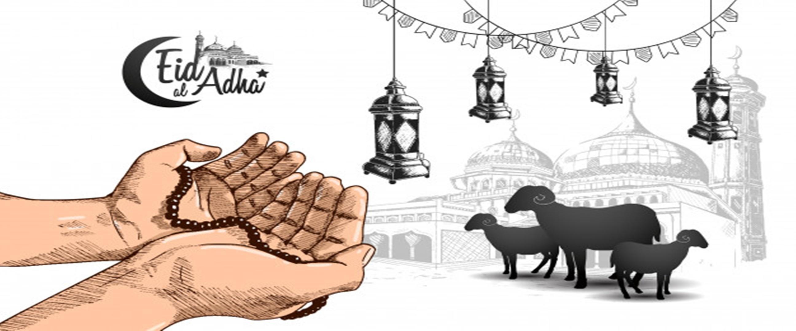 Amalan sunnah yang dianjurkan saat Idul Adha beserta keutamaannya