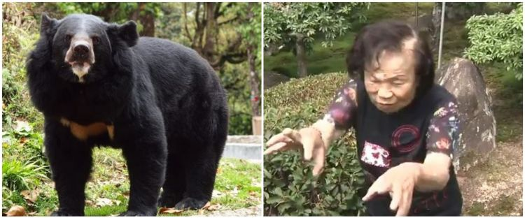 Diserang beruang liar, aksi nenek 82 tahun ini bikin melongo