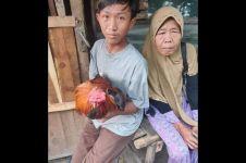 Ingin beli HP untuk sekolah online, anak ini jual ayam kesayangan