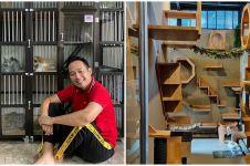 10 Potret rumah kucing milik Denny Cagur, fasilitasnya bikin takjub