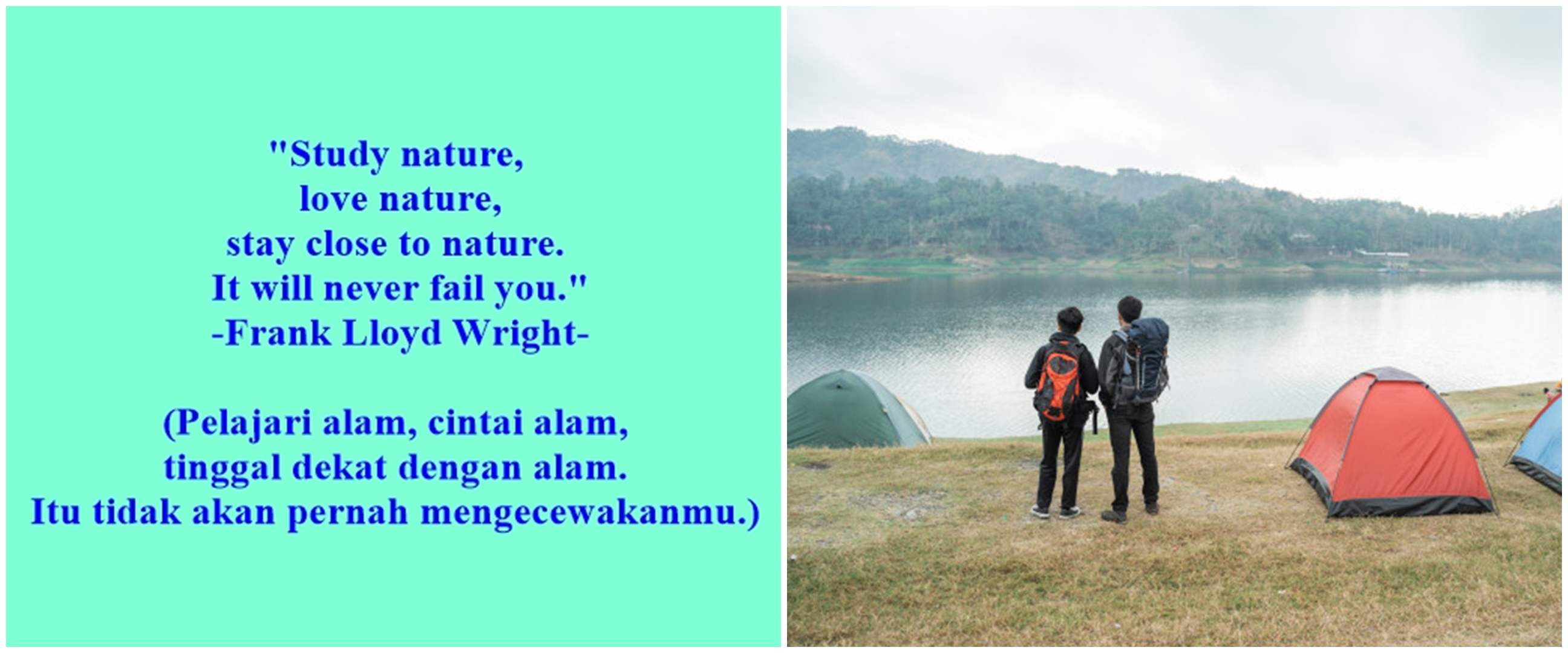 40 Kata-kata keren bahasa Inggris tentang alam, cocok untuk caption