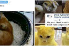 10 Status FB lucu pengen marah ini bikin geleng kepala
