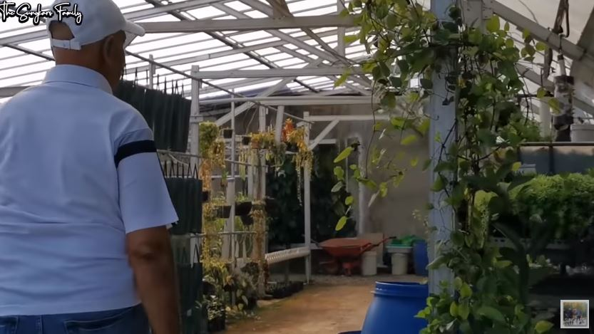 Potret terbaru Mark Sungkar fokus jadi petani © 2020 YouTube/The Sungkar Family