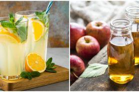 7 Ramuan minuman alami untuk diet, segar, sehat, dan kaya manfaat