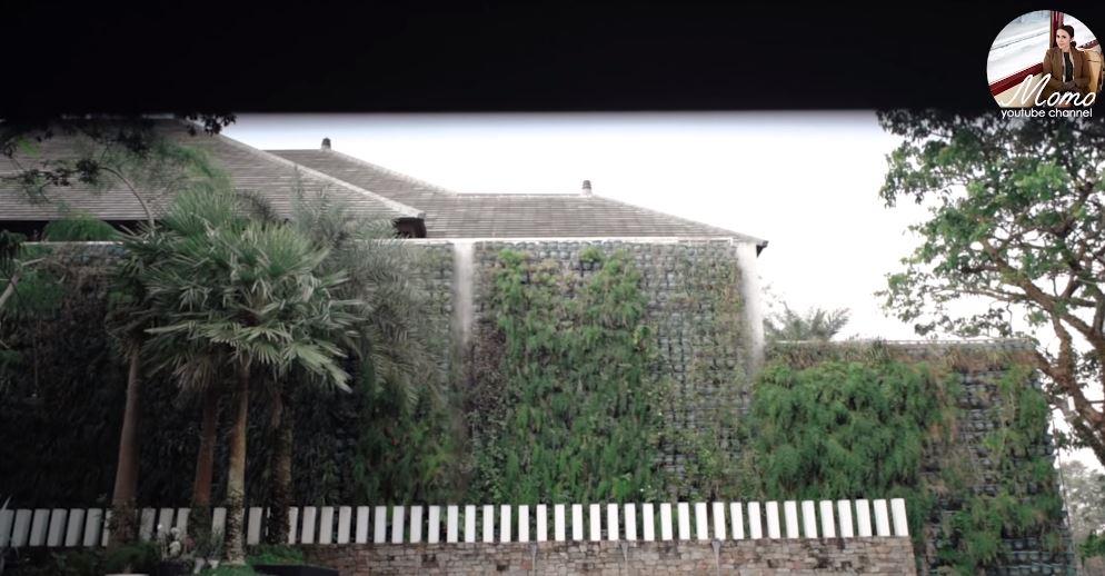 area outdoor rumah Momo YouTube