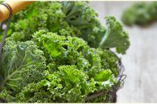 10 Manfaat sayur kale untuk kesehatan, kurangi risiko sakit jantung