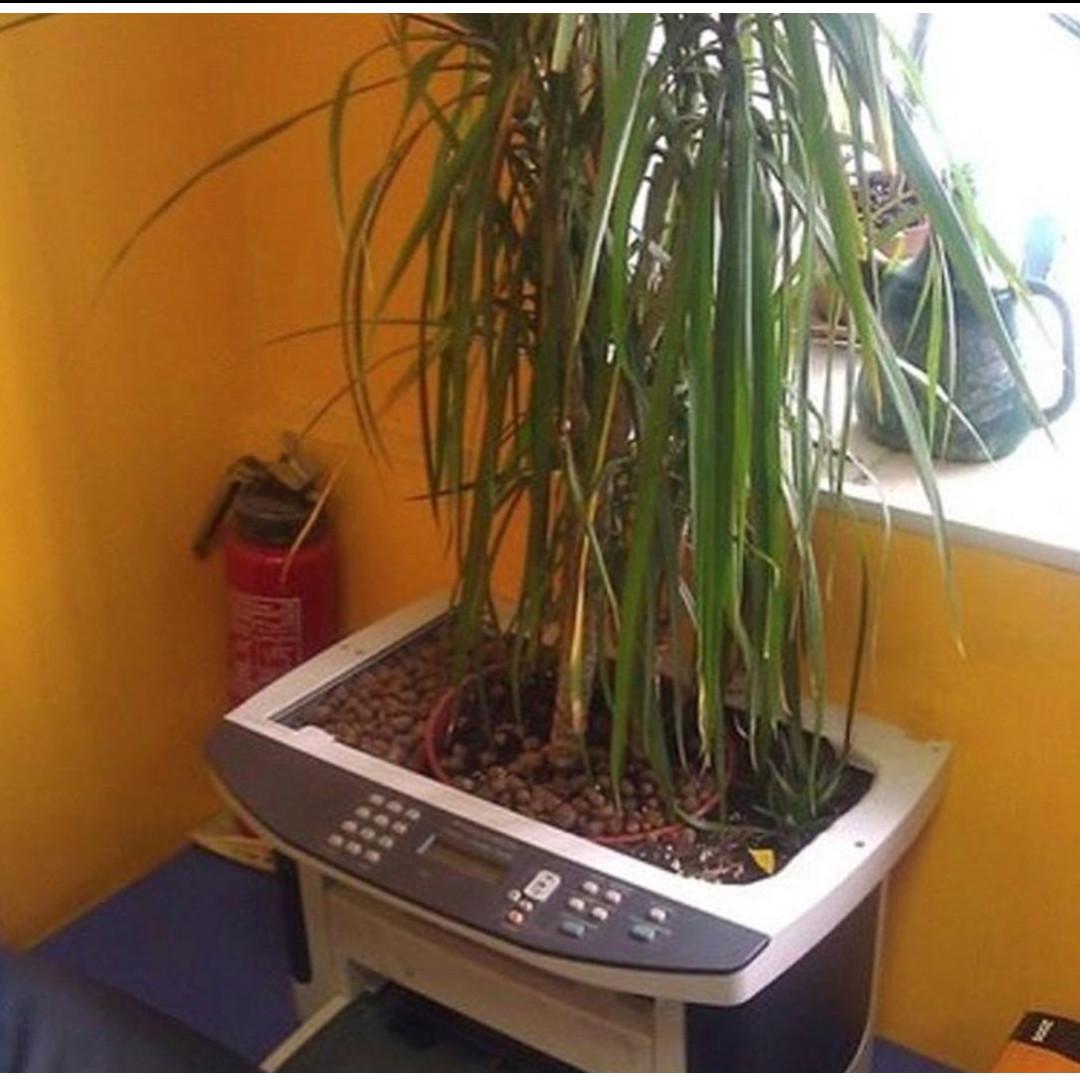 10 Potret pot tanaman dari barang bekas elektronik ini kreatif abis