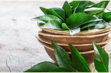 10 Manfaat daun kari untuk kesehatan, mencegah diabetes