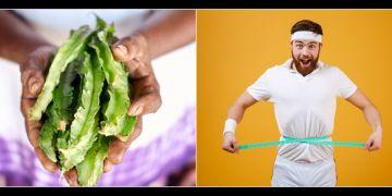 10 Manfaat kecipir untuk kesehatan, bisa turunkan berat badan