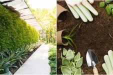 8 Cara mudah membuat vertical garden di rumah, bikin udara sejuk