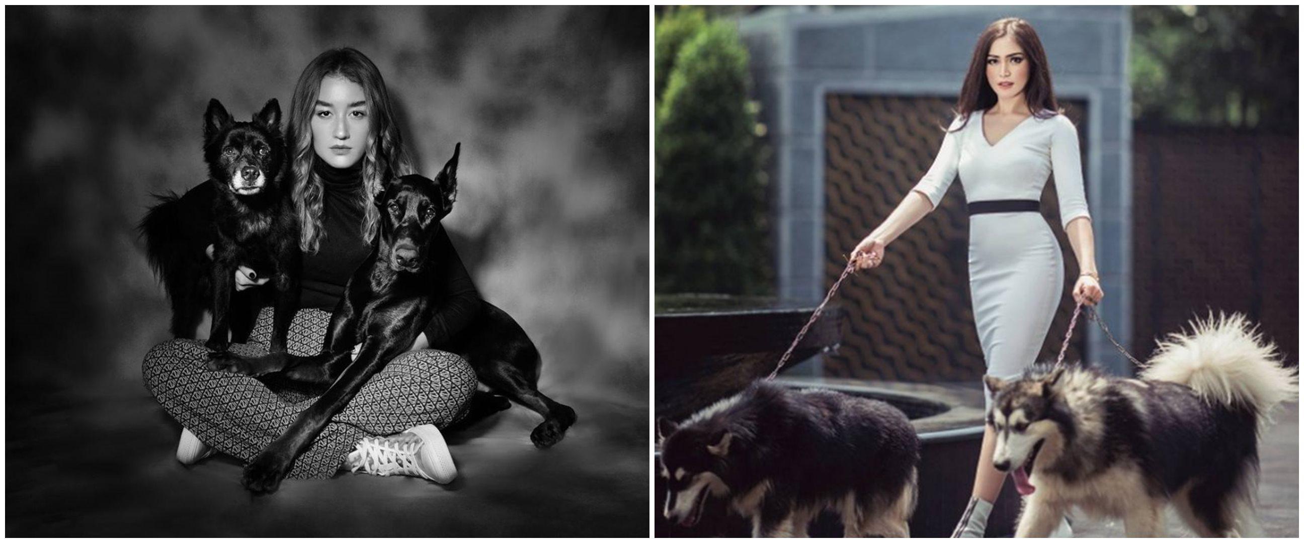 Gaya 10 seleb cantik saat pemotretan dengan anjing