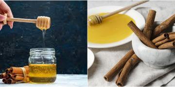 15 Manfaat madu & kayu manis untuk kesehatan, serta cara penggunaannya