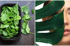 25 Manfaat bayam hijau untuk kesehatan dan kecantikan, tingkatkan imun