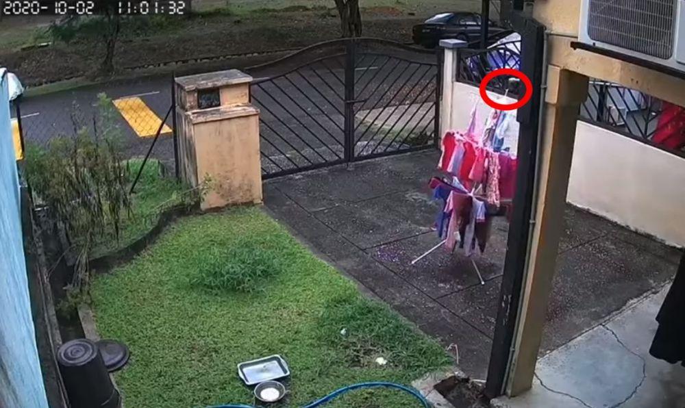 aksi terpuji pria angkat jemuran Facebook