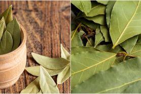15 Manfaat air rebusan daun salam untuk kesehatan, mencegah kanker