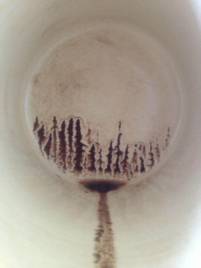 kejadian tak disengaja di gelas kopi © Berbagai sumber