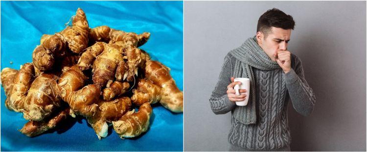 11 Manfaat kencur untuk kesehatan, atasi batuk hingga cegah kanker