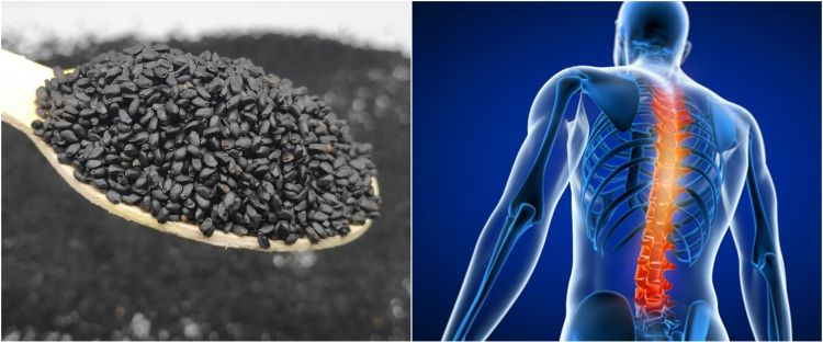 11 Manfaat biji selasih bagi kesehatan, obati batuk dan flu