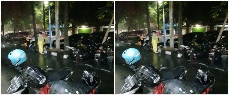 Aksi wanita lindungi kucing makan di tengah hujan deras, bikin salut