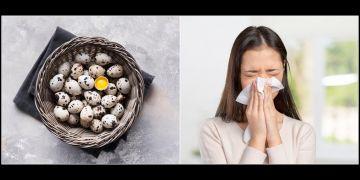 10 Manfaat telur puyuh untuk kesehatan, mengobati gangguan pernapasan