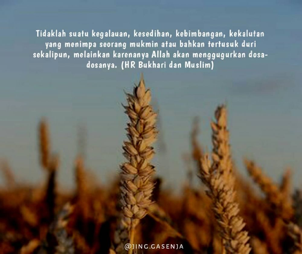 Kata-kata mutiara simpel dan bijak © 2020 brilio.net/ Instagram