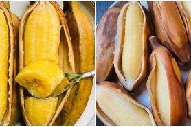 10 Manfaat pisang kepok rebus untuk kesehatan, mengatasi maag