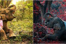 10 Gaya pemotretan Ashanty dengan gajah, hasilnya keren abis