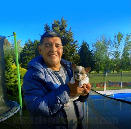 Fakta meninggalnya Diego Maradona © 2020 brilio.net