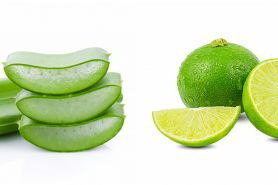 Cara membuat masker dari lidah buaya dan jeruk nipis