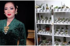 10 Potret kebun dalam rumah Soimah, asri dan rapi