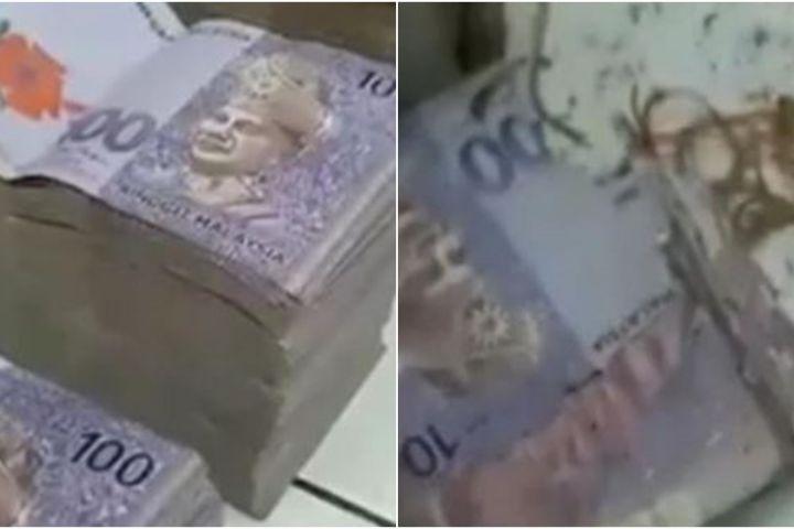 Viral kisah nenek harus rela uangnya Rp 1 miliar dimakan rayap