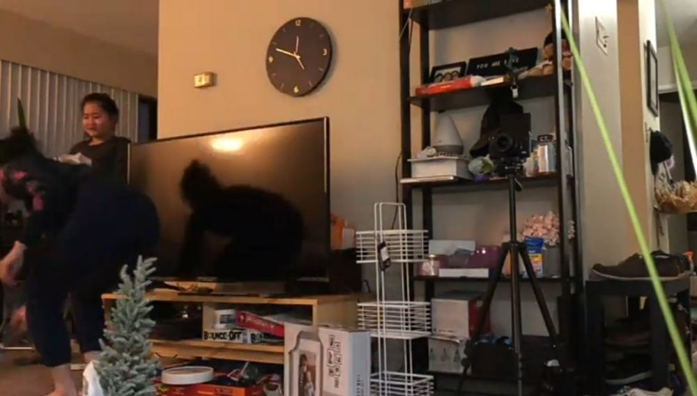Apartemen Gisela Cindy di Kanada © 2020 brilio.net YouTube