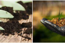 Awas, ini 5 akibat negatif penggunaan pupuk berlebih pada tanaman
