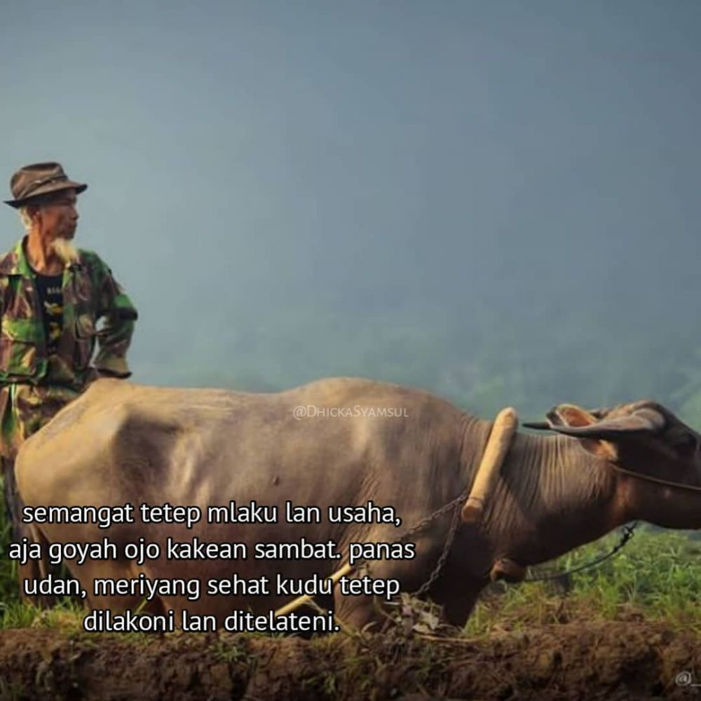 Kata bagus bahasa Jawa © Instagram