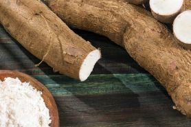 6 Tips memilih & mengolah tepung tapioka agar sajian jadi lebih nikmat