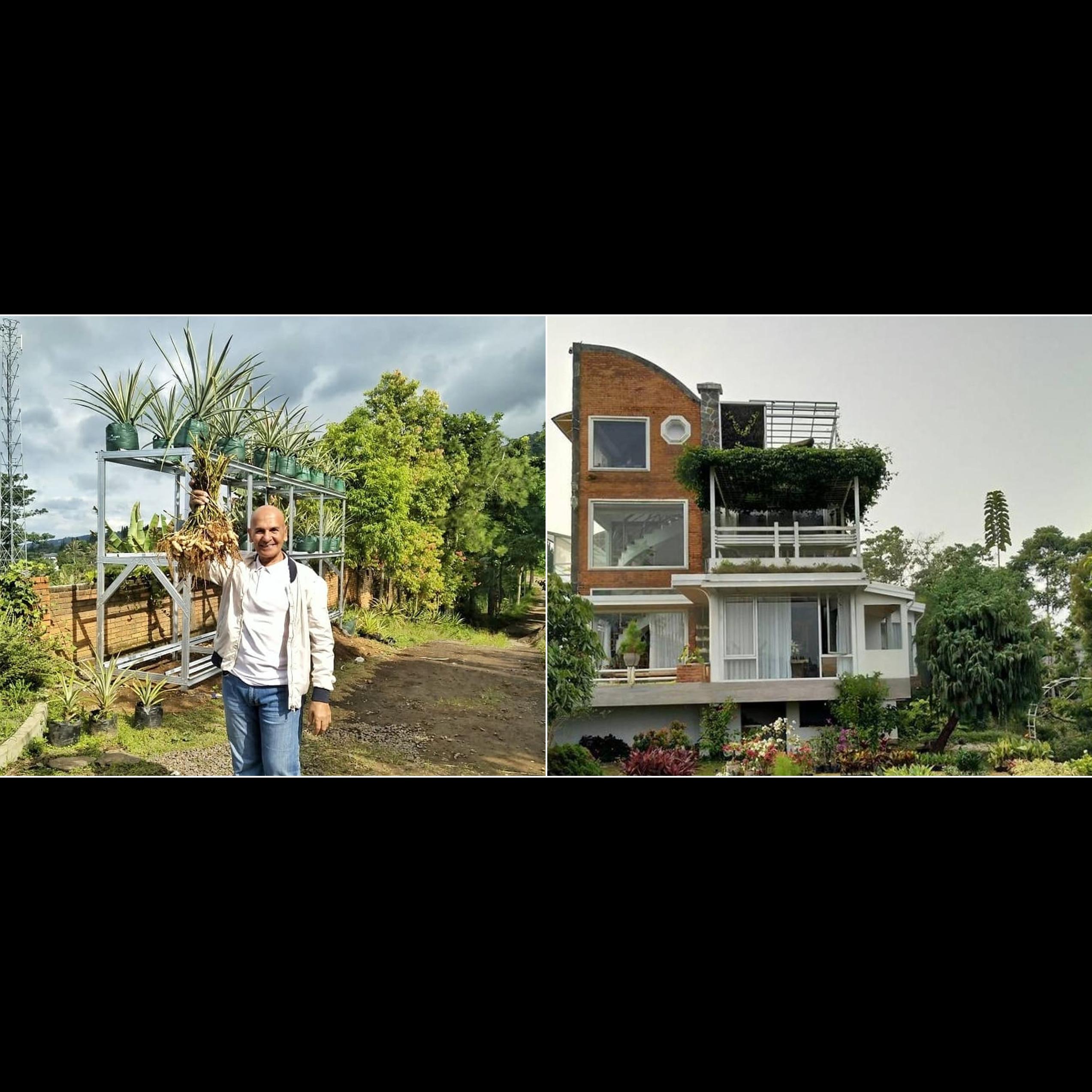 Penampakan rumah 7 seleb dengan konsep ramah lingkungan, asri banget