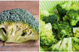 23 Manfaat brokoli untuk kecantikan dan kesehatan, atasi jerawat