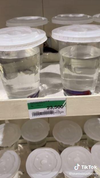 supermarket jualan ikan cupang Berbagai sumber