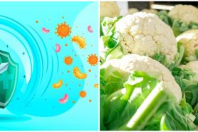 8 Makanan penambah daya tahan tubuh di musim hujan