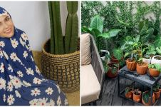 10 Potret koleksi tanaman hias Meisya Siregar, rumah jadi kian asri