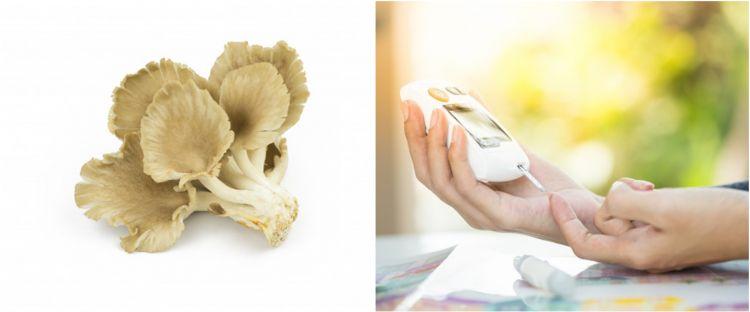 10 Manfaat jamur tiram untuk kesehatan, dapat mencegah diabetes