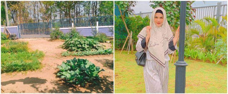 8 Potret rumah Katty Butterfly di Thailand, luas ada kebun sayur